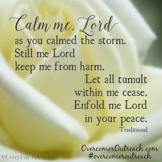 Calm me Lord as you calmed the storm. Still me Lord, keep me from harm.