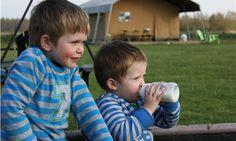 Bijna geen tijd om pauze te nemen, te druk met buitenspelen, maar die melk stop doet het goed! Puur genieten op FarmCamps 't Looveld Melk, Children, Kids, Om, Young Children, Young Children, Boys, Boys, Boy Babies