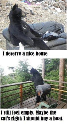 Introspective bear