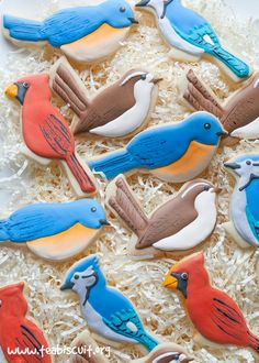 Cute little decorated backyard bird cookies with a gluten free cut out cookie recipe fro teabiscuit.org