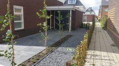Oprit particuliere tuin
