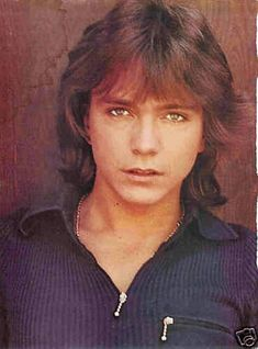 David Cassidy. 1970's. poster inside my locker door. ;)