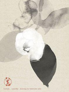 Hidetoshi Mito No Ma Camellia Art And Illustration, Sumi E Painting, Tinta China, China Art, Japanese Painting, Japan Art, Japanese Artists, Gravure, Botanical Art