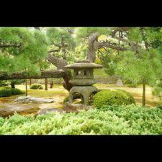 #0923 #元離宮二条城 の中の #庭園 的なの
