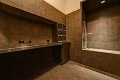 Pet grooming station, with dog bath / shower, plus stainless counter for drying, grooming...