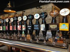 Florida Food, Florida Travel, St Petersburg Fl, Wesley Chapel, Daughters, Brewing, Ale, Cruise, Places