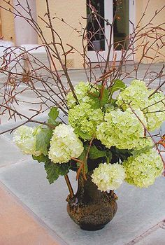 Wiggy Flowers - San Francisco, CA, United States. Jeannie Jar vase arrangement by Catherine Conlin of Wiggy Flowers