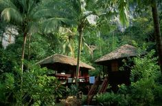 pictures of jungle houses | Jungle house in Brazil: