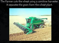 This PowerPoint explains the process of farming wheat. Could be used alongside the story 'The Little Red Hen' during a harvest festival topic.