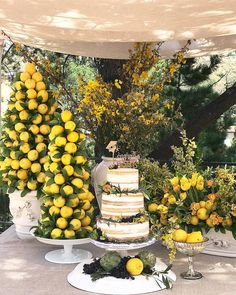 wedding cakes nakedcake If youre looking for an easy way to brighten up celebration, try incorporating fresh lemon touches. Summer Wedding Cakes, Elegant Wedding Cakes, Lemon Centerpieces, Lemon Centerpiece Wedding, Yellow Wedding, Wedding Colors, Lemon Party, Mediterranean Wedding, Wedding Toasts