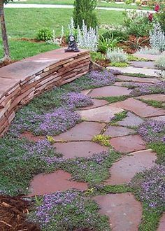 Simple and Eye-catching Flagstone Backyard Walkway Inspirations Backyard Walkway, Flagstone Walkway, Front Yard Landscaping, Stone Walkways, Front Walkway, Unique Garden, Dream Garden, Garden Paths, Land Scape