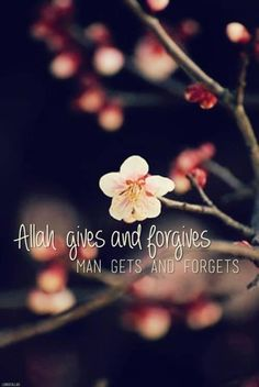 Allah gives and forgives Human gets and forgets!!!!!! ~Amatullah♥