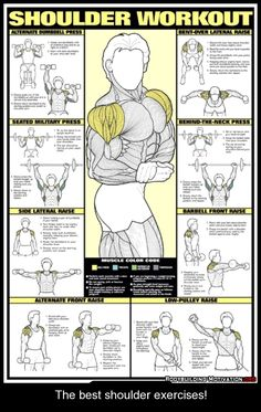 The best shoulder exercises!