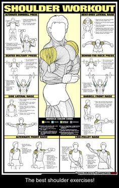 The best shoulder exercises!