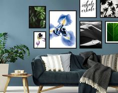 If you truly love Nature, you will find beauty everywhere. Checkout the Floral category on our website and embellish your living rooms with our posters. Check out the link in bio. #naturelovers #natureposter #posterlife #phalaenopsisorchid #orchidflower #flowerposter #greenery #posterinspiration #livingroomposter #livingroomdecor #decorideas #posterdecors #loversofnature