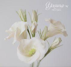 El Lisianthus o Eustoma es una flor muy apreciada en los ramos de novia. El significado de ésta flor es de entrega amorosa y puede transmitir el deseo de que la persona que envía quiere comprometerse profundamente con la persona que los recibe.