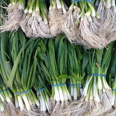Lovin' these #scallions at Union Square Greenmarket in #Manhattan! #farmersmarketnyc