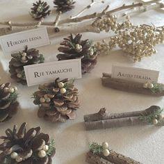 「✴︎ 【Place cards】 ・ ・ 松ぼっくりver.はこんな感じで♡ ・ ・ 統一感あるように枝と同じ、杉とペッパーベリーを付けました.。.:*☆ ・ ・ バランス見て散りばめたらミニツリーぽくなった♪ ・ ・ 80ヶ完了〜っ*\(^o^)/*」 Wedding Name, Wedding Cards, Diy Wedding, Wedding Flowers, Woodland Wedding, Christmas Wedding, Christmas Crafts, Christmas Decorations, Wedding Place Settings