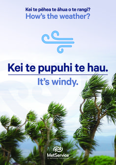 Science Resources, Teaching Resources, Activities, Maori Words, Weather And Climate, Mad Science, Learning Spaces, New Zealand, Maori Art