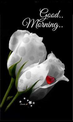Good morning 🌞 dear husband ❤️ I love you Jaanu ❤️ Good Morning Posters, Very Good Morning Images, Good Morning Nature, Special Good Morning, Good Morning Cards, Good Morning Love, Good Morning Quotes, Goog Morning, Weekend Quotes