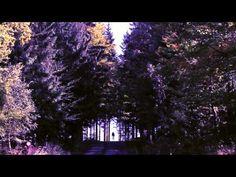 #Kross #Vento 4.0 #Trailer
