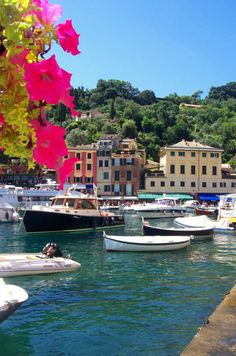 Portofino, Province of Genoa, Liguria region. Italy. Plans for a 2014/2015 trip to Italy in the works ... eek!