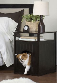 Nightstand/doggie house. Except my dog sleeps in bed with us so this would be for kitty. :)