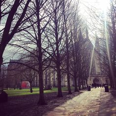 Winchester Cathedral looking moody. (at Winchester Cathedral) Winchester, Over The Years, Cathedral, Photographs, Sidewalk, Plants, Photos, Side Walkway, Cathedrals