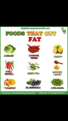 Fat burning food! Click on the Pin to see the Best Foods That Help Burn Fat @ Fitimize.com