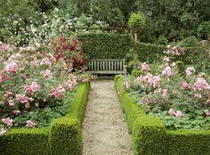 Simple Design Ideas Rose Garden Plans | flowers | Pinterest | Garden ...
