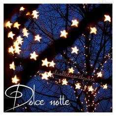 Dolce Notte! ~ Sweet Night!