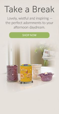 Scentsy consultant-Desiree Diehl. Shop Scentsy...it's a flame less scent company that offers so many great products!