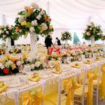 Table Linen Rentals, Specialty Linen – Cloth Connection