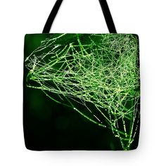 Morning Dew Tote Bag featuring the photograph Morning Dew In The Green by Sverre Andreas Fekjan Morning Dew, Bag Sale, Great Artists, Reusable Tote Bags, Photograph, Tapestry, Urban, Art Prints, Men