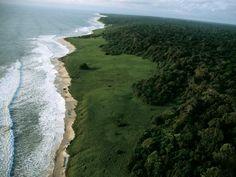 Loango National Park, Gabon, Africa