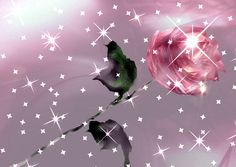 Pink-Sparkle-Animated-roses-11033142-500-354.gif (500×354)