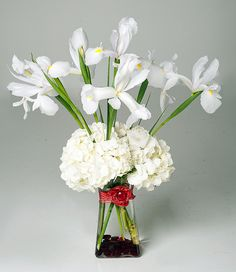 white hydrangea and white iris