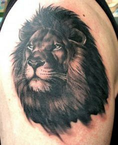 Lion Tattoos on Sleeve
