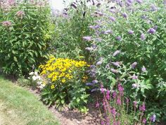 butterfly garden | Article: Florida Butterfly Garden: Selecting native plants to attract ...