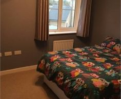 Large double room in new build, Daventry, Northamptonshire. Large double room in a quite new build in the centre of Daventry. Which is also right next to the country park.  The room only has a double bed in there, this can be removed if necessary.  I do have a dog but she is only a small pug who is quiet and wouldn't hurt anyone.  The room is available now, if you want any further information just ask