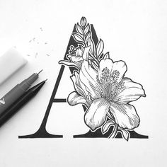 A for Azalea! Kickstarting my A-Z floral series again. Hopefully I will finish it this time! What flower should i draw for the letter B? by aaroink