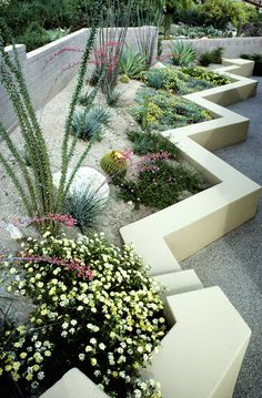 Contemporary Southwestern Garden (~This design has much to appreciate. Contemporary Garden Design, Landscape Design, Desert Landscape, Dry Garden, Garden Art, Water Garden, Modern Landscaping, Garden Landscaping, Small Gardens