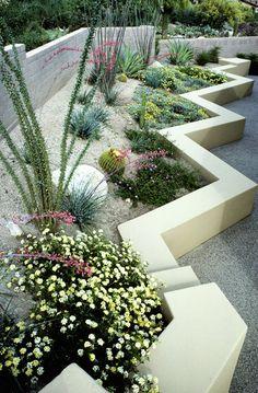 Contemporary Southwestern Garden