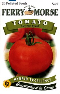 Tomato Early Per Sq True To Her Name Takes First Place As The Absolute Earliest Slicing Plants Yield An Abundance Of 4