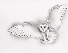 ORIGINAL Flying Barn Owl Drawing Pencil and by JaclynsStudio, $90.00 More