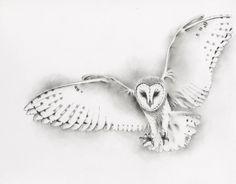 ORIGINAL Pencil Flying Barn Owl Drawing, Owl art, Barn Owl Sketch - Pencil and…