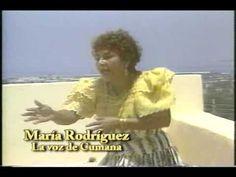 """.Texto de Áquiles Báez:""""Una cayena en el pelo, los labios rojos llenos de pasión como la sangre, falda de flores, sonrisa destellante y una voz que acaricia. Cuando ella canta, vibra todo el oriente venezolano y se prende de alegría. Pocas veces me he emocionado tanto como cuando escucho el canto de esta doña, señora del estribillo, la reina del folklore de Cumaná: María Rodríguez."""