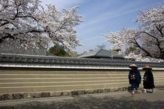 Hiroji Kubota JAPAN. Kennin-ji temple, Kyoto. 2008.