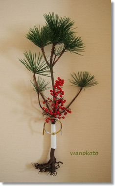 Japanese New Year, Chinese New Year, New Years Decorations, New Year Card, New Years Party, Green Flowers, Ikebana, Xmas, Christmas