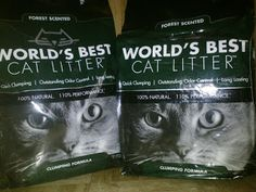 Pawsitively Pets reviews our new Forest Scented Clumping Cat Litter